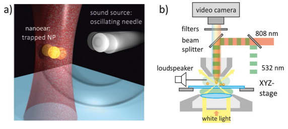 sound waves | Sydney Physics